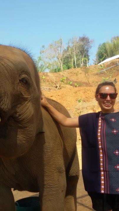 chiang_mai-elefant-cut