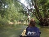 chiang_mai-elephant-family-care