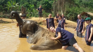 chiang_mai-fun-elephants