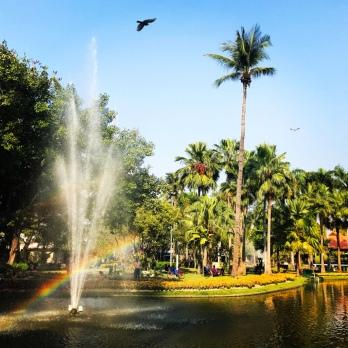chiang_mai-park-regenbogen