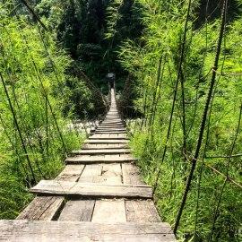 Nepal-Tag09-Holzweg