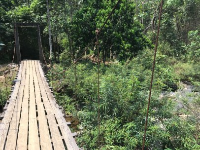vang-vieng-jungle-bruecke