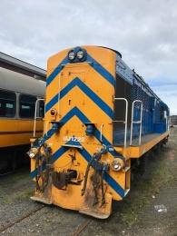 Dunedin-Lok