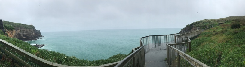 Dunedin-Peninsula-Panorama-view