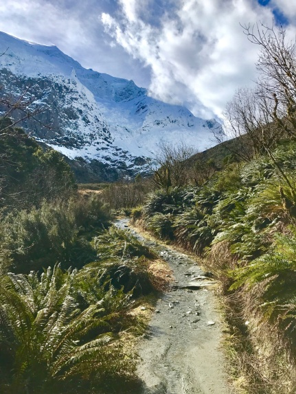 Mount-Aspiring-der-weg